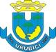 Leilão Simultâneo de ativos inservíveis da Prefeitura de Urubici/SC.