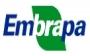 EMBRAPA (Agroindustria Tropical)