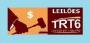 Leilão judicial - diversos bens