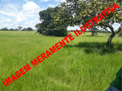 FAZENDA EM PONTE ALTA DO TOCANTINS-TO POR APENAS R$ 250.000,00