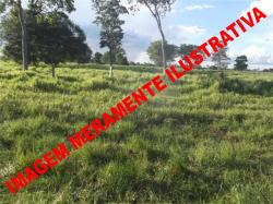 FAZENDA EM FORMOSO DO ARAGUAIA-TO 400,00.00 HA APENAS R$ 1.000.000,00